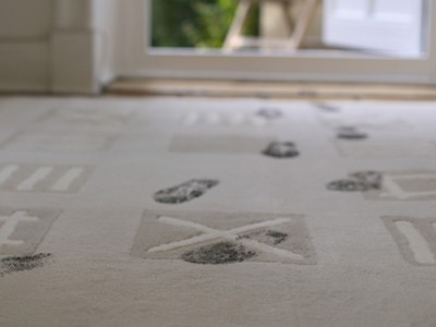 How to Remove Wet or Dry Mud from Carpets