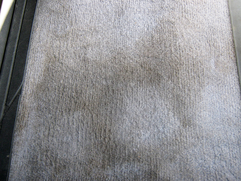 How to remove water stains from carpet